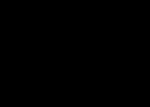 Logo Orizzontale nero
